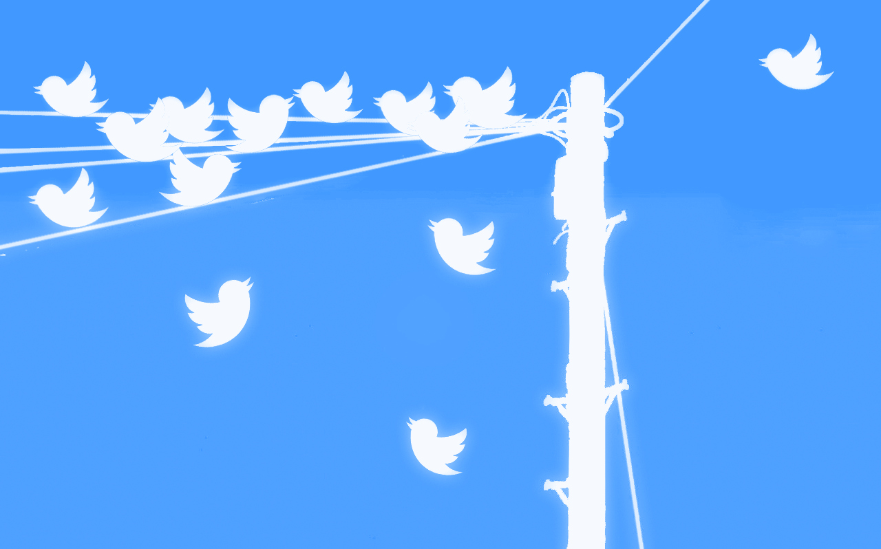 Share your twitter